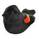 Audubon Bird: Red-Winged Blackbird With Real Bird Call