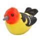 Audubon Bird: Western Tanager With Real Bird Call