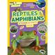 NG Kids Reptiles & Amphibians Sticker Acty Bk