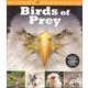 Birds of Prey (Visual Explorers)