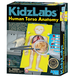 KidzLabs Human Torso Anatomy