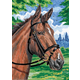 Mini Colour Pencil By Numbers - Horse