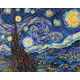 Starry Night (Van Gogh) Diamond Dotz Kit (Intermediate)
