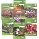 God's Design for Life for Beginners - Plants Set