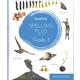 Purposeful Design Spelling Plus - Grade 5 Teacher Edition