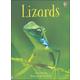 Lizards (Usborne Beginners)