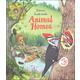 Look Inside Animal Homes (Usborne)