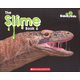 Slime Book (Side by Side)