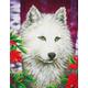 White Wolf Diamond Dotz Kit (Intermediate)