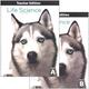 Life Science Teacher's Edition 5th Edition