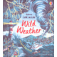Look Inside Wild Weather (Look Inside Books)