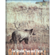 Primary Composition Book