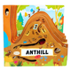 Anthill (Peek Inside)