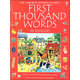 First Thousand Words in English (Usborne Internet-Linked)