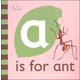 A is for Ant Board Book