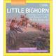 Remember Little Bighorn