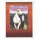 Drawing, Painting & Sculpting Horses