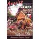 Amazing Dinosaurs (Advanced Readers)