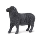 Black Sheep (Safari Farm)
