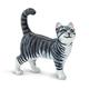 Gray Tabby Cat (Best in Show)