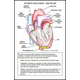 Heart Laminated Card