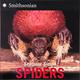 Spiders (Smithsonian)