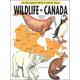 Wildlife of Canada Coloring Book