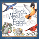 Birds, Nests, and Eggs (Take-Along Guide)