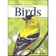 Birds of the Rocky Mountains Playing Cards