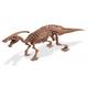 Dino Excavation Kit - Parasaurolophus Skeleton (13 Pieces)