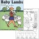 Baby Lambs Art Book