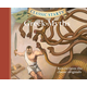 Greek Myths Classic Starts CD