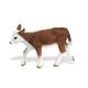 Hereford Cow (Safari Farm)