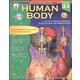 Human Body Grades 2-3
