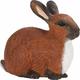 Rabbit (Safari Farm)