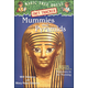Mummies and Pyramids (MTH Research Guide)