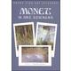 Monet 16 Art Stickers