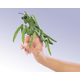Mini Praying Mantis Finger Puppet