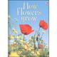 How Flowers Grow (Usborne Beginners)