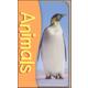 Animals Pocket Flash Cards