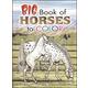 Big Book of Horses Coloring Book