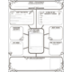 All-About-Me Web Graphic Organizer Poster