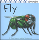Fly (Bouncing Bugs)