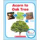 Acorn to Oak Tree (Rookie Read-About Science)