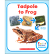 Tadpole to Frog (Rookie Read-About Science)