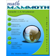 Math Mammoth Rev Light Blue Series Grade 1-A Worktext (Colored Version)
