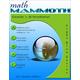 Math Mammoth Light Blue Series Grade 1-B Worktext (Colored Version)