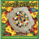 Mosaic Turtle Stepping Stone Kit
