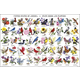 United States of America - State Birds & Flowers Laminated Poster (24