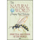 Insects & Arachnids of the World Playing Card